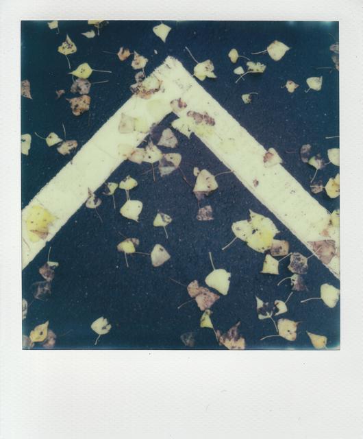 Cyrus Mahboubian polaroid9
